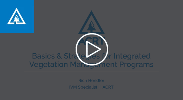 Basics and Strategies for IVM-1